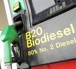 Andalucía es la primera en capacidad de producción de biocarburantes