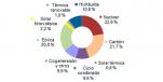 Enero 2015: 36,2% de generación eléctrica renovable